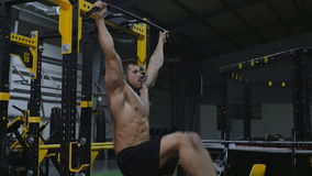 Bodybuilder exercising with weights stock video footage