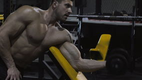 Bodybuilder exercising with weights stock video