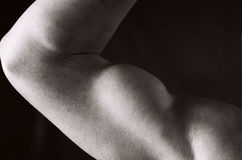 Bodybuilder femminile Fotografie Stock