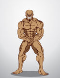Bodybuilder Fitness Illustration Stock Photo
