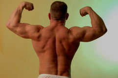 Bodybuilder flew Royalty Free Stock Photo