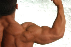 Bodybuilder flexing arm. Buff male bodybuilder flexing bicep on metallic background Stock Images
