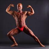 Bodybuilder flexing biceps Royalty Free Stock Image