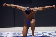 Bodybuilder stock photos