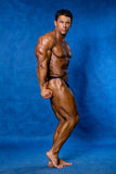 Bodybuilder flexing his muscles. Stock Photography