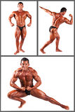 Bodybuilder flexing his muscles in studio set Royalty Free Stock Images