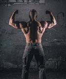 Bodybuilder on grunge wall royalty free stock images