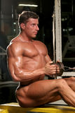 Bodybuilder in the gym. Training shot of a young man in the gym - seated row close grip, straight back Royalty Free Stock Photos
