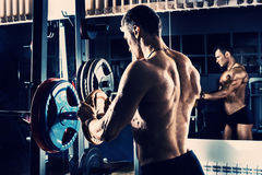 Bodybuilder in gym Stock Photography