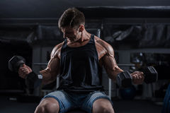 Bodybuilder in the gym Royalty Free Stock Photography