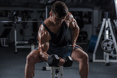 Bodybuilder in the gym Royalty Free Stock Photos