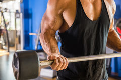 Bodybuilder at gym Stock Photo