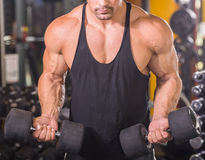 Bodybuilder at gym Stock Photography