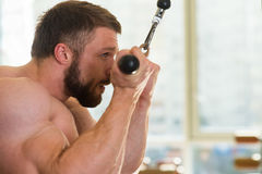 Bodybuilder in gym. Stock Image