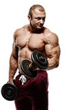 Bodybuilder in the gym training biceps with dumbbell Royalty Free Stock Image