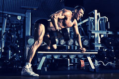 Bodybuilder in gym Royalty Free Stock Photo