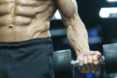 Bodybuilder Stock Photography