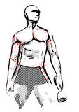 Bodybuilder illustration Royalty Free Stock Image