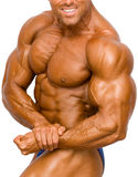 Bodybuilder Isolated. On white royalty free stock photo