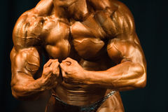 Bodybuilder le plus musculaire Images libres de droits