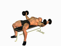 Bodybuilder lifting dumbbells Royalty Free Stock Photos