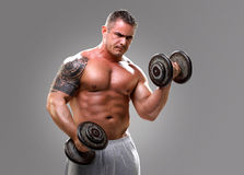 Bodybuilder lifting dumbells, closeup 2 Stock Image