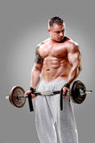 Bodybuilder lifting weights stock photos