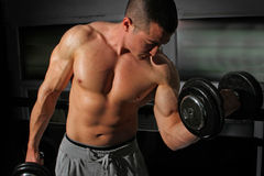 Bodybuilder lifting weights Royalty Free Stock Image