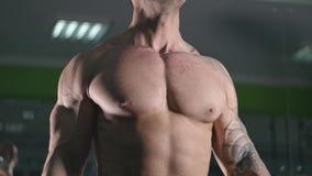 Bodybuilder lifts dumbbells stock video footage