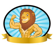Bodybuilder Lion Royalty Free Stock Photos