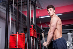 Bodybuilder looking in the camera and exercising in the gym Stock Photo