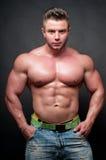 Bodybuilder mâle images libres de droits