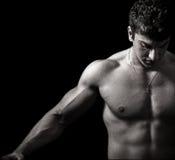 Bodybuilder mâle musculaire artistique Photo stock
