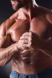 Bodybuilder man Royalty Free Stock Image