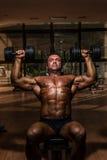 Bodybuilder masculin faisant l'haltère de petit morceau de presse d'épaule Photos stock