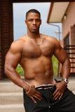 Bodybuilder masculino imagem de stock