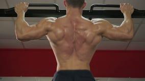 Bodybuilder met perfect spierlichaam die trekkracht-UPS doen, die voor de concurrentie voorbereidingen treffen stock videobeelden