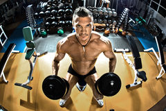 Bodybuilder. Muscle athletic guy bodybuilder ,  with dumbbells , in gym Stock Photos
