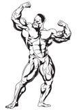 Bodybuilder musculaire illustration stock