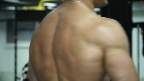 Bodybuilder musculaire d'homme posant avec le sien de retour clips vidéos