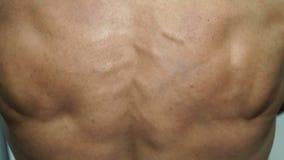 Bodybuilder musculaire d'homme posant avec le sien de retour banque de vidéos