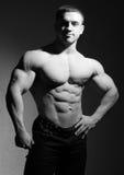Bodybuilder muscular imagens de stock