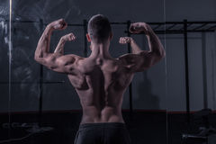 Bodybuilder, muscular strong back, mirror image. One young adult man, bodybuilder, muscular strong back, mirror image, dark indoors gym Stock Image