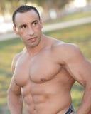 Bodybuilder nella sosta fotografie stock
