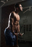 Bodybuilder Nerd Exercising Triceps Stock Photography