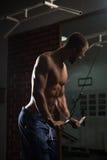 Bodybuilder Nerd Exercising Triceps Royalty Free Stock Images