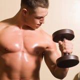 Bodybuilder opleiding Royalty-vrije Stock Foto