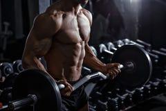 Bodybuilder opleidingsbicepsen met barbell in de gymnastiek royalty-vrije stock afbeeldingen