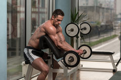 Bodybuilder Performing Biceps Curls With A Barbell Royalty Free Stock Photos