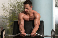 Bodybuilder Performing Biceps Curls With A Barbell Stock Image